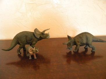 À droite : bébé et adulte tricératops Papo. À gauche : tricératops Schleich. Crédit : Chris Bellabas.