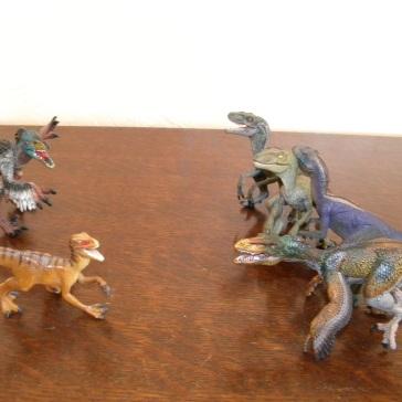 À gauche : Utahraptor (Safari, premier plan), vélociraptor à plumes (Bullyland, second plan). À droite : vélociraptor à plumes (Papo), vélociraptors sans plumes (Papo)