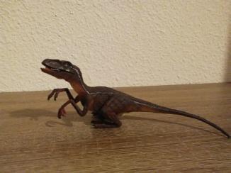 Vovotrade® Blue Velociraptor, crédit : Chris Bellabas