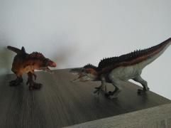 Acrocanthosaurus Rebor et Acrocanthosaurus Papo. Crédit : Chris Bellabas