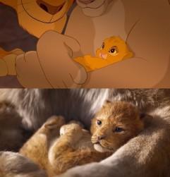 le-roi-lion-comparaison-2019-1994-