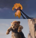le-roi-lion-comparaison-2019-1994-013